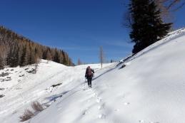 Na Jenkovi planini