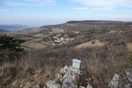 Varda