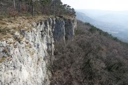 Črnokalska stena