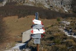 Križišče poti