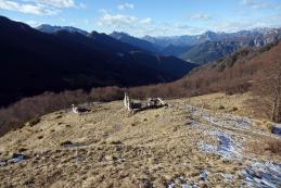 Planina Zgornje Brdo