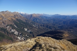 Razgled z vrha