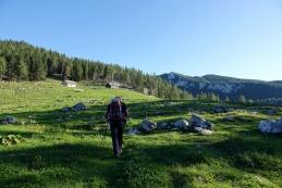 Jutro na planini Podvežak