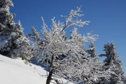 Zima na grebenu