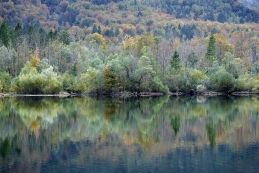 Bohinjsko jezero...