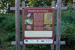 ...in se začne urejena botanična pot.