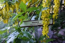 ...opremljena s tablicami, na katerih so imena rastlin.