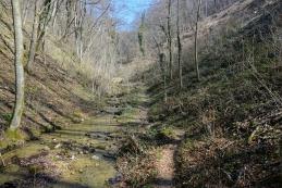 Dolina Višnjice