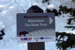 Po Medvedovi poti sva hodila...