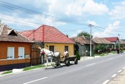 Konjska vprega na cesti v Transilvaniji