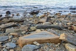 Flišna kamnina