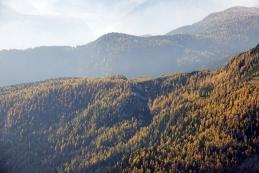 Zlata jesen pod Krstenico