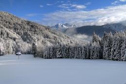 ....ki so dan po sneženju videti takole...