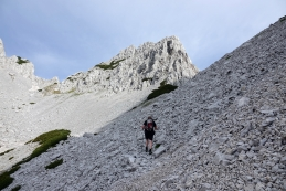 Čeprav se zdi, da zadnji del vzpona poteka po pretežno kamnitem svetu...
