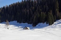 ...čez Višarsko planino...