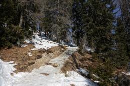 Snega ponekod že malce zmanjkuje...