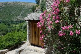 Vhod v cvetju