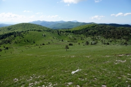 Razgled z vrha Ostriča