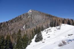Goli vrh z Jenkove planine