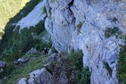 S planine Koren na planino Košutna