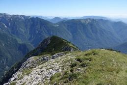 Mokrica in Velika planina