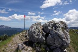 Govca, najvišji vrh Olševe