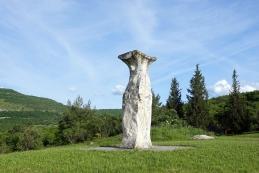 Kip šavrinke