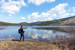 Petelinjsko jezero