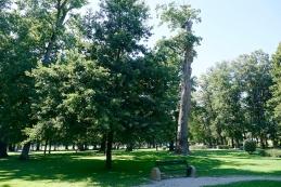 Park 1. slovenskega tabora