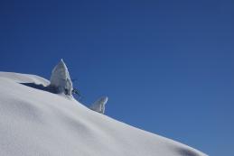 ...še na Kosmati vrh...
