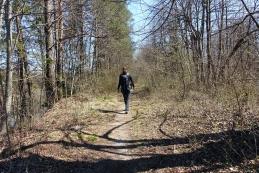 Pot ob Savi