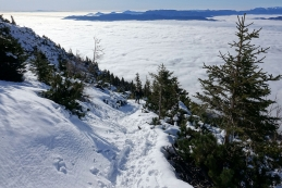 Končno več snega