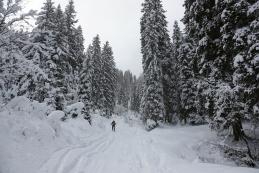 Višje smo, več je snega in lepše je...
