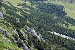 Pogled v dolino
