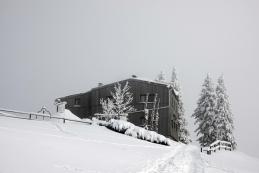 Domžalski dom