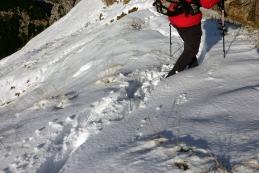 Napihan sneg