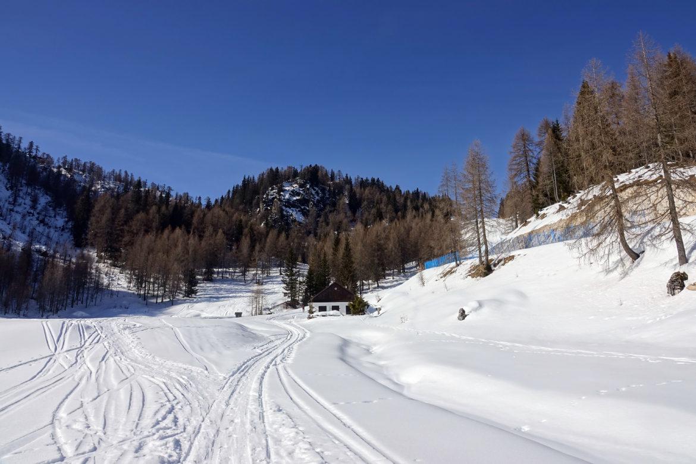 3-DSC05015-Planina